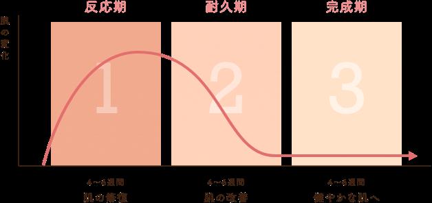 セラピューティックプログラム 3つのプロセス